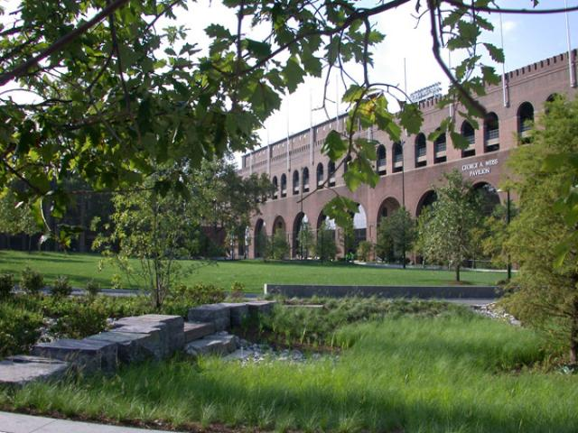 View of lawn in front of the building