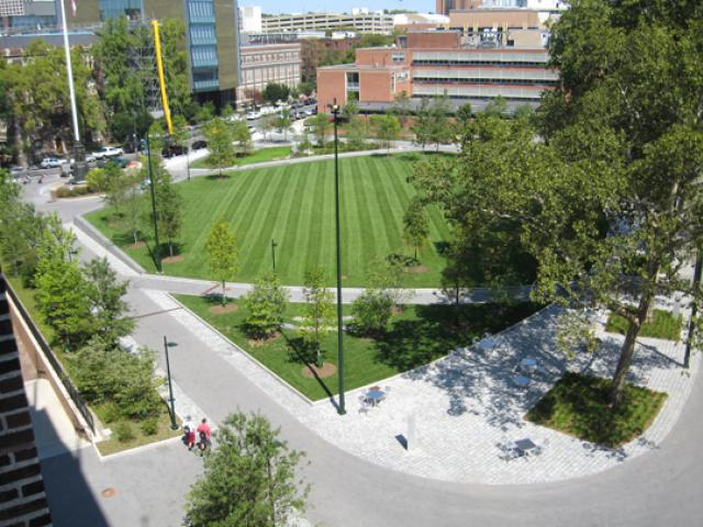 View from Education Commons