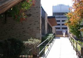 Newman Center pathway