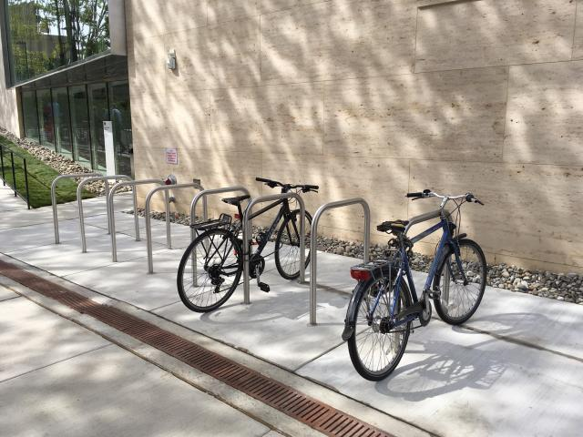 bike rack behind Perry World House