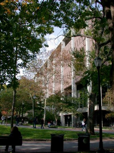 Dietrich Library Center seen through the trees