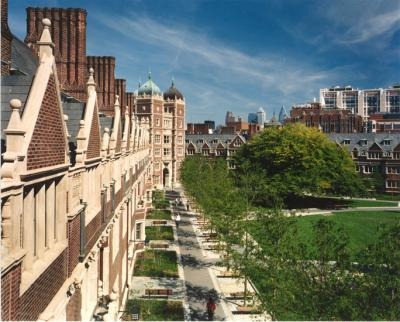 A view of the Quadrangle from above