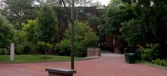 The Hill College House courtyard surrounded by trees